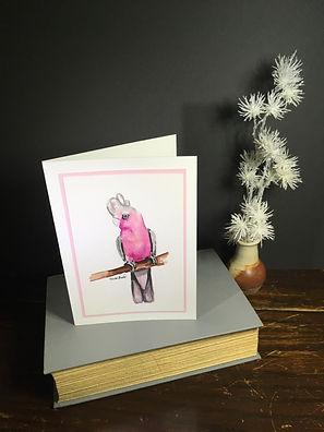 Galah Cockatoo on a greeting card