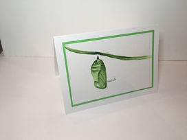 Monarch Chrysalis original ink painting on a greeting card