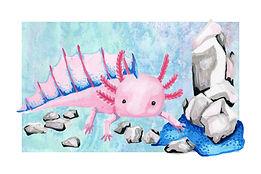 April - Axolotl - Diamond