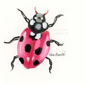 Ladybug Ink Painting
