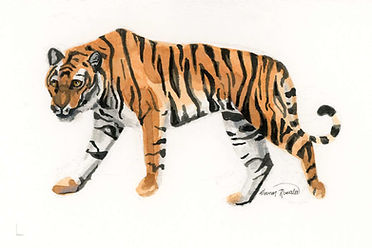 Tiger Ink Painting