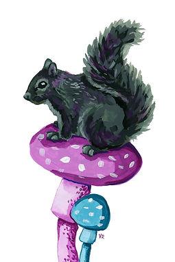Black Squirrel on Mushrooms