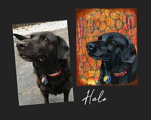 Acrylic Pet Portrait Example
