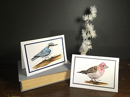 Nuthatch and Purple finch on greeting cards
