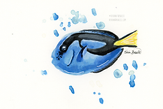 Blue Tang Ink Painting