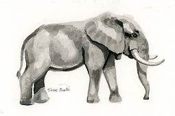 Elephant Ink Painting