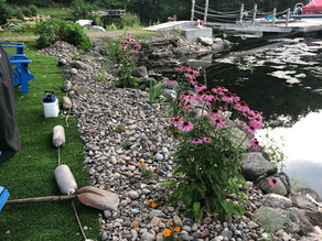 How to Use River Rock in Landscaping