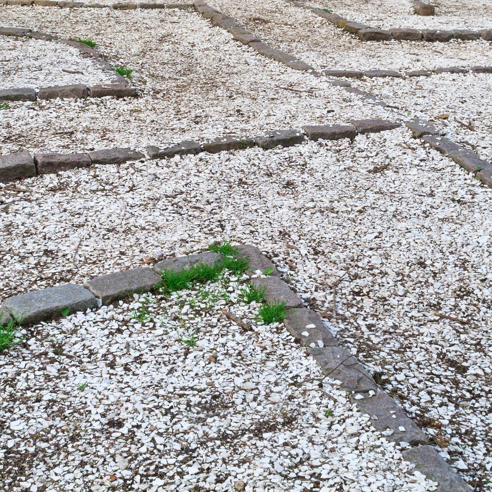 Seashell Pathway