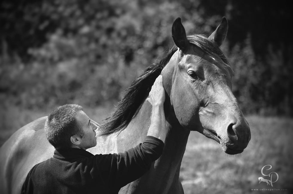Alexis et de ses jeunes chevaux