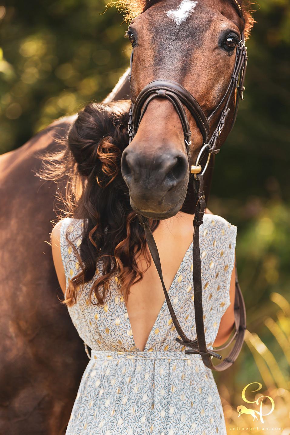 """"""" Dans les immenses prairies de mon esprit,  ce cheval revient sans cesse enjoliver mes rêves, dans ce paradis perdu aux allées fleuries, il attend que le brouillard se lève, pour partir se perdre dans l'infini. """"  Texte personnel"""