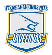 AM Kingsville.jpeg