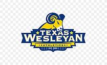 TX Wesleyan.png