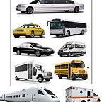 Passenger Vehicles.jpg