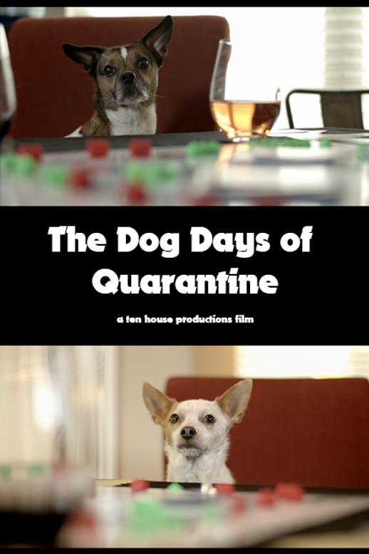 Dog-days.png