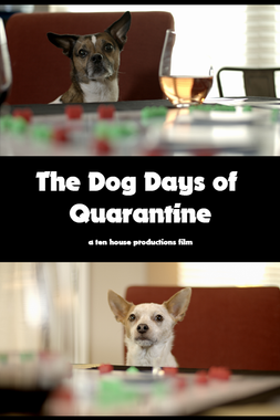 The Dog Days of Quarantine