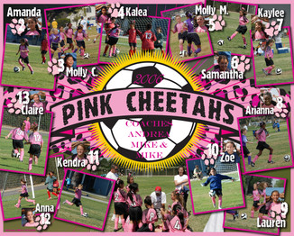 pink cheetahs collage.jpg