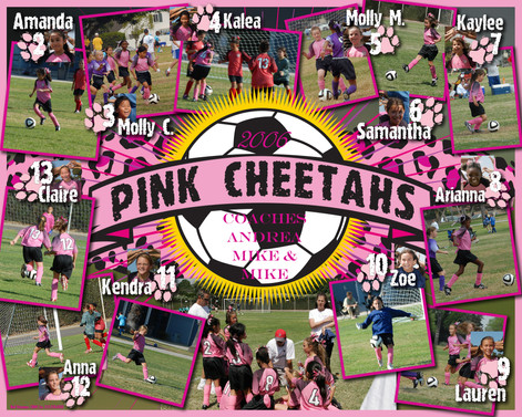 pink cheetahs collage.jpg