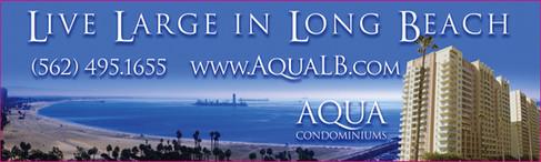 Aqua Airplane Banner.jpg