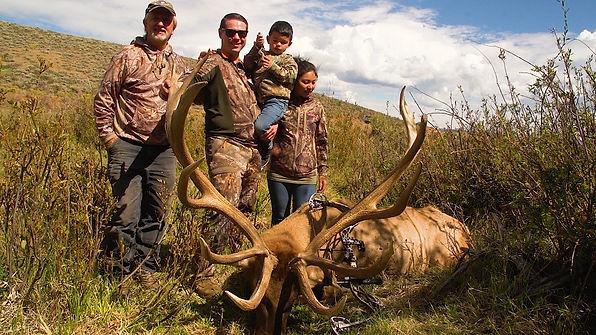 Elk 8.jpg
