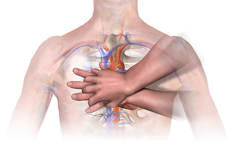 CPR_Adult_Chest_Compression_Heart-1.png