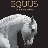 equus .jpg