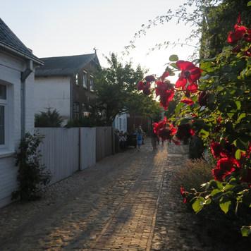 Wyk auf Föhr Schleswig-Holstein