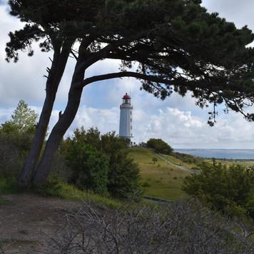 Insel Hiddensee Ostsee
