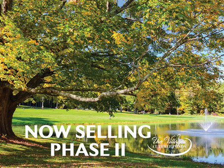 Now Selling Phase 2!