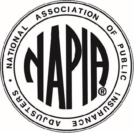 Napia Logo2.jpeg