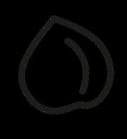 POIS CHICHE shape-13.png