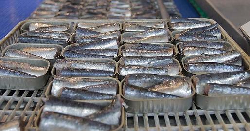 conservas-portuguesas-peixe.jpg