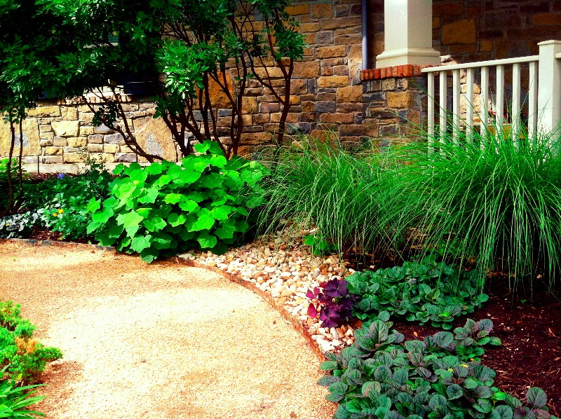 shade path with rock drainage