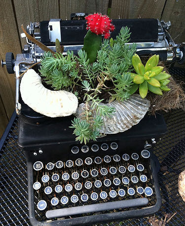 planted type writter