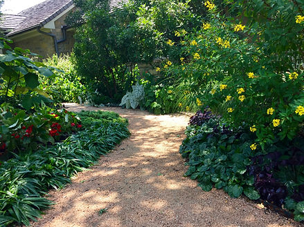 water-wise dappled shade path