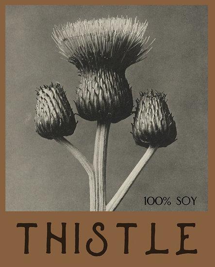 T H I S T L E // bergamot - lavender - eucalyptus - citrus