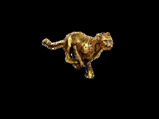 Gepardy Biznesu 2016