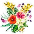 Floral%2520Arrangement%25202_edited_edit