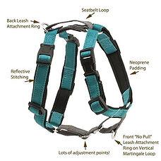 3_in_1_teal_harness.jpg