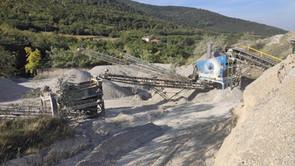 Quarry Station plant 1.jpg