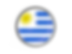 uruguay_round_button_with_metal_frame_64