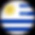 uruguay-flag-3d-round-medium.png