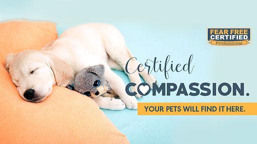 Cover-Certified-Comfort-Dog.jpg