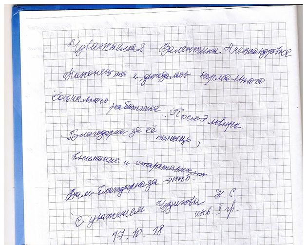 отзыв Чудинова 001.jpg