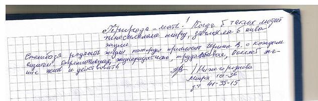 отзыв Нижегородцева 001.jpg