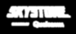 FIRST-Skystone-RGB_Wordmark-reverse.png