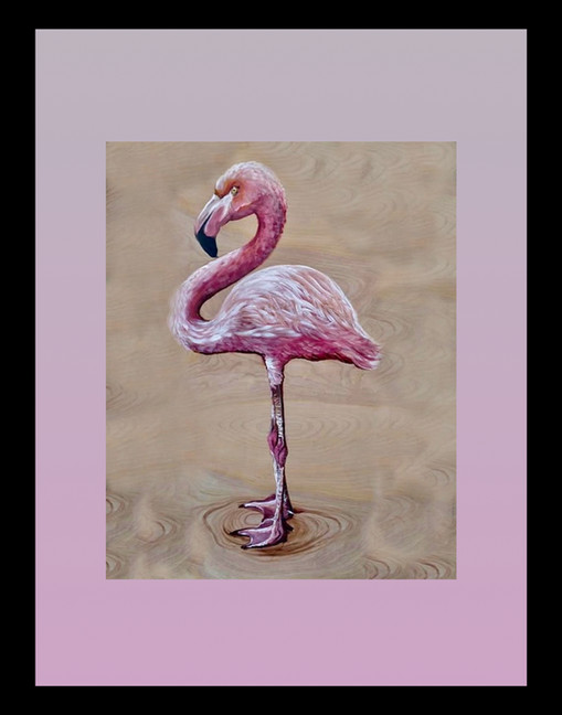 SONG OF THE FLAMINGO