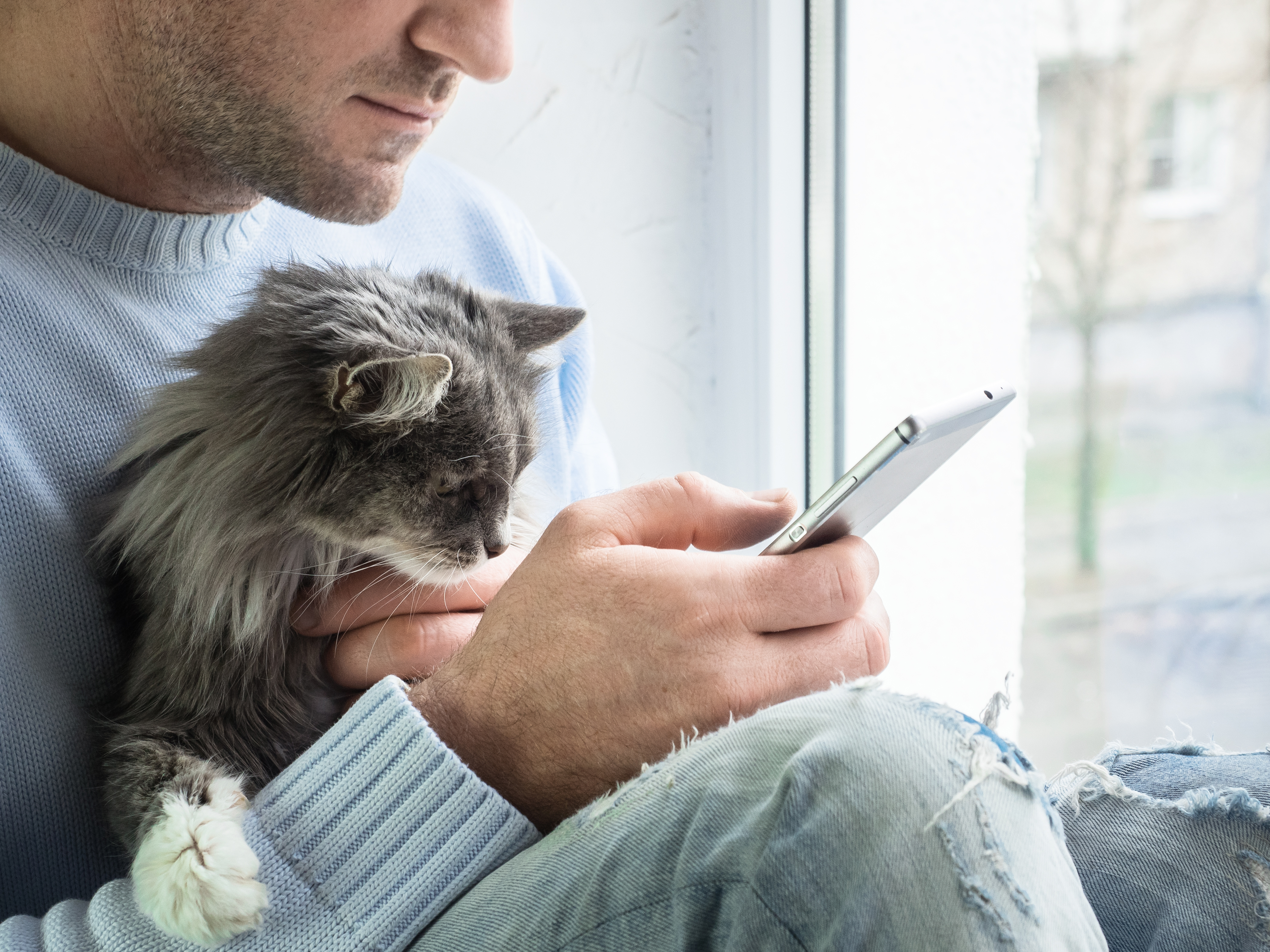 Handsome man with mobile phone and cute