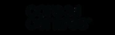 FullContour_Website__core_3d_centers_log