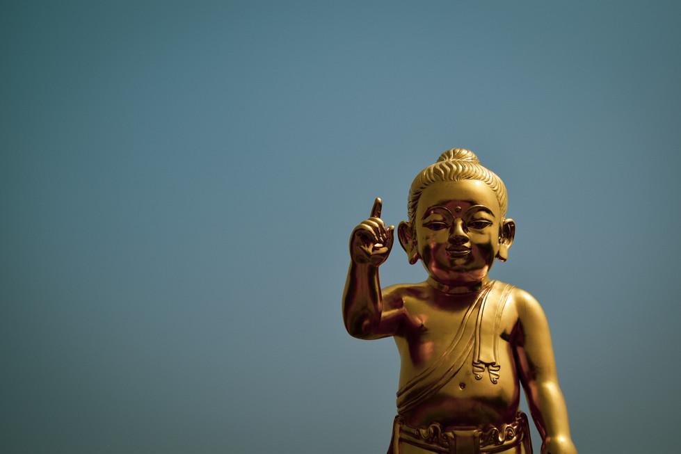 The boy Buddha