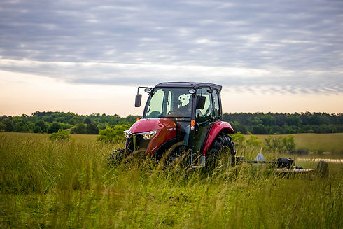 yanmar-berry-may2016-img_5981reduced.jpg